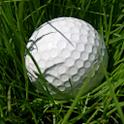 Speed Golf logo