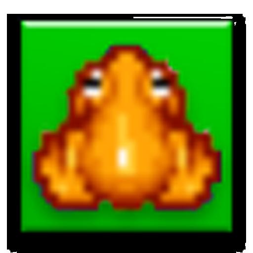 Frog Maze