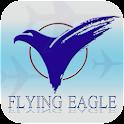 Flying Eagle Travel Pte Ltd icon