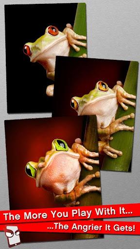 Angry Frog Free