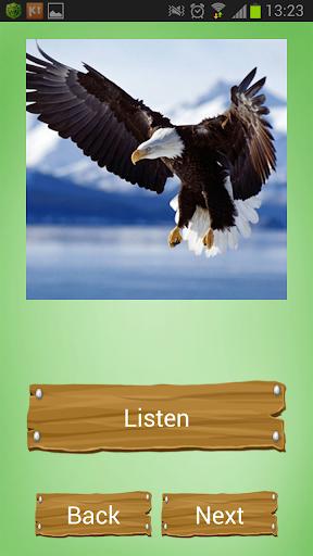 玩街機App 动物声音免費 APP試玩