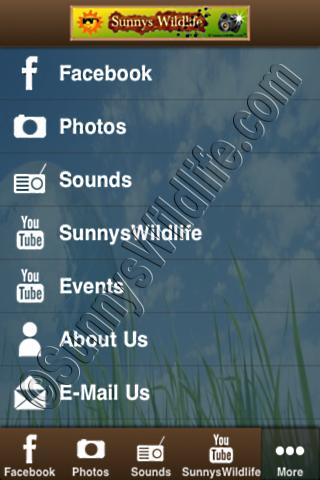 SunnysWildlife.com®- screenshot