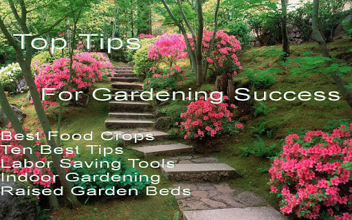 Top Tips For Garden Success