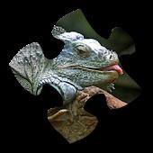 Lizard Jigsaw Puzzles
