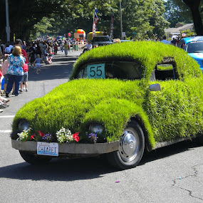 Chiapet Car  July 4th Parade.jpg