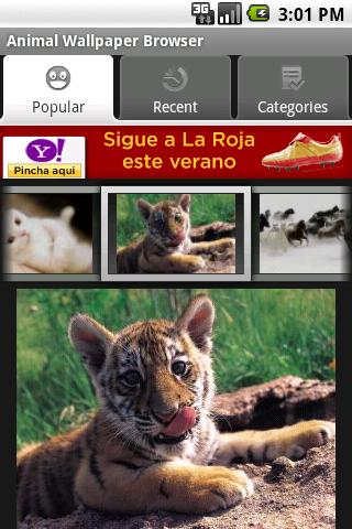 Animal Wallpaper Browser - screenshot