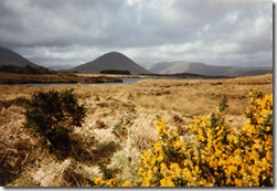 19970401-003-Connemara