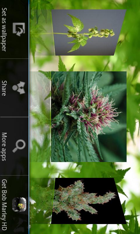 Hemp HD Wallpapers - screenshot