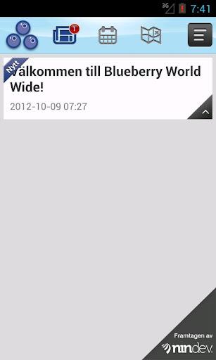 Blueberry world wide