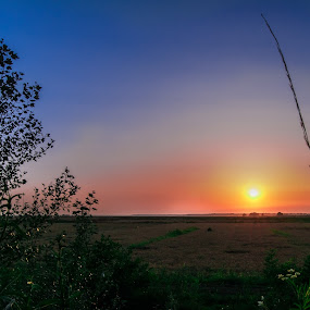 Sunset over the fields of Danube by Petrea Ionut - Landscapes Sunsets & Sunrises ( field, color, sunset, summer, danube,  )
