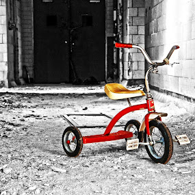 One, Two... by Dave Freeman - Transportation Bicycles ( red, tricycle, abandoned )