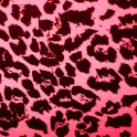 Hot Pink Leopard Print LWP icon