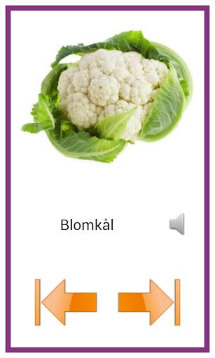 玩教育App|学习瑞典语由图像免費|APP試玩