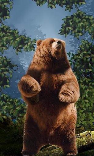 Dancing Bear Live Wallpaper