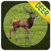 Sniper Deer Shooting - 3D