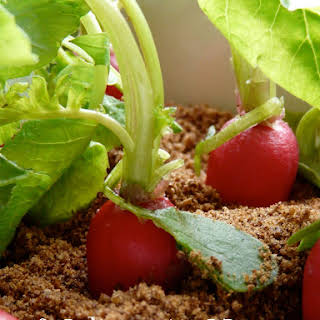 """Planted"" Radish and Greek Yogurt  Appetizer."