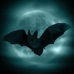 Moonlight Spirits. Nightmare.