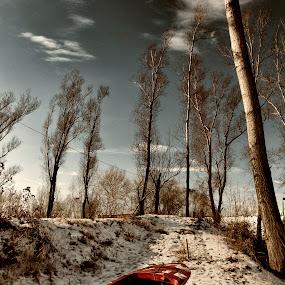 by Vladimir Jablanov - Landscapes Prairies, Meadows & Fields