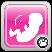 Babykick Tracker-Free