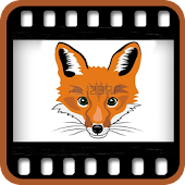 Fox Movies : Hollywood Movies