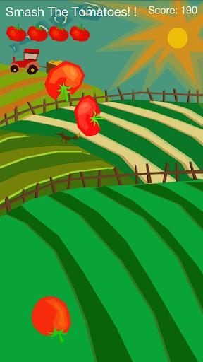 西红柿粉碎机