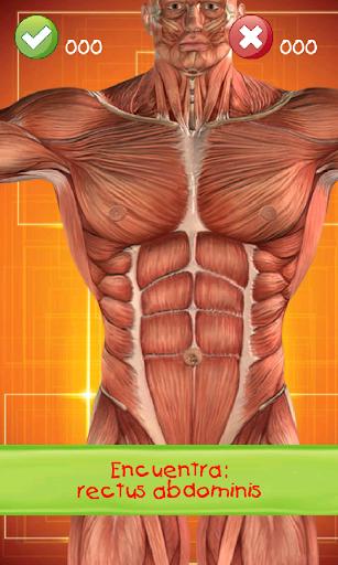 Aprende anatomia humana niños