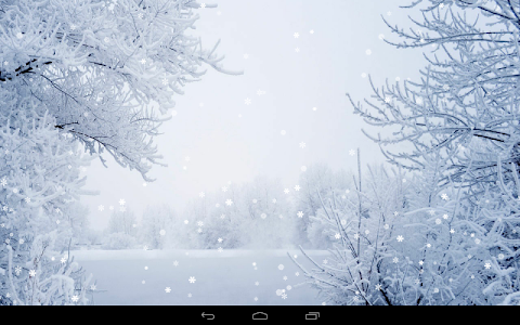 Winter Wallpaper screenshot 5