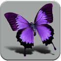 HD Beautiful butterfly logo