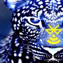 Bluefi Jaguar icon