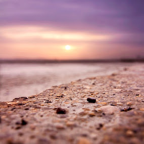 The Pattern Of Life by Mussarrat Fatima - Nature Up Close Rock & Stone ( life, nature, relax, sunset, beauty )