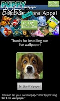 Screenshot of Puppy Beagle Live Wallpaper