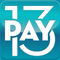 PAYMENTS 2013 logo