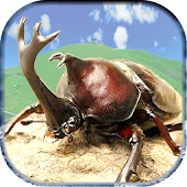 Charges! Stag beetle Great War