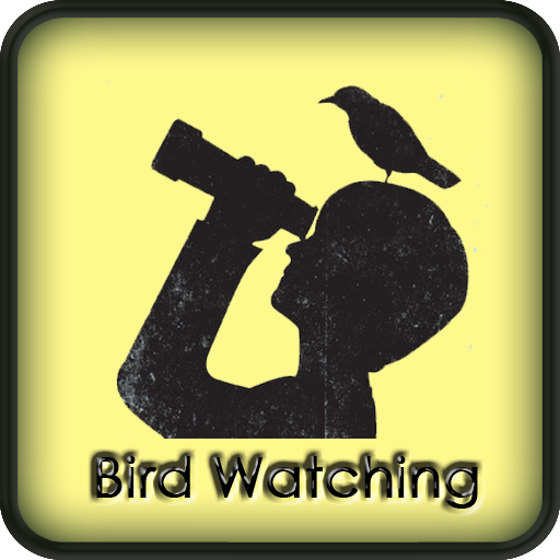 Bird Watching Amazing Guide