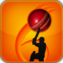 Stick Cricket Pro T20 icon