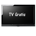 TV Gratis 2013 icon