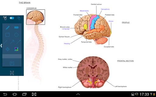 玩醫療App|NATOM VIEWER免費|APP試玩
