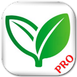 Home Remedies (Pro) 1.5