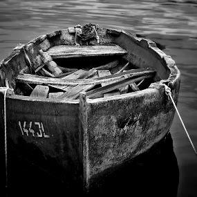 by Ivanka Ruter - Black & White Objects & Still Life