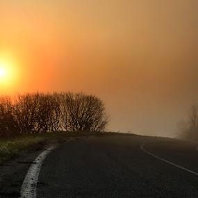 Morning on the street by Geanina Boureanu - Landscapes Sunsets & Sunrises ( nature, sunrise, landscape )