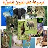 موسوعة  عالم الحيوان