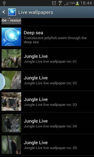 jungle live