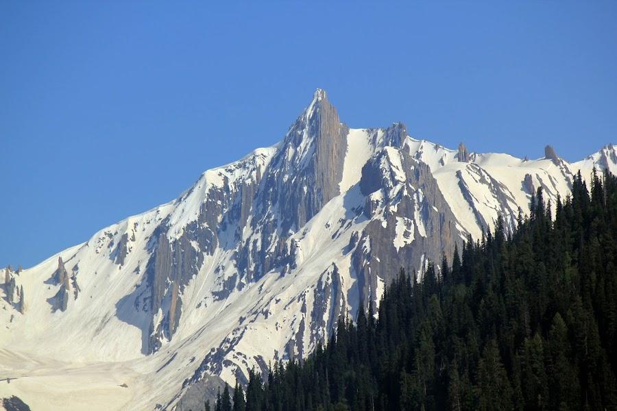 The Himlayas, Kashmir by Tarun Bhatnagar - Landscapes Mountains & Hills