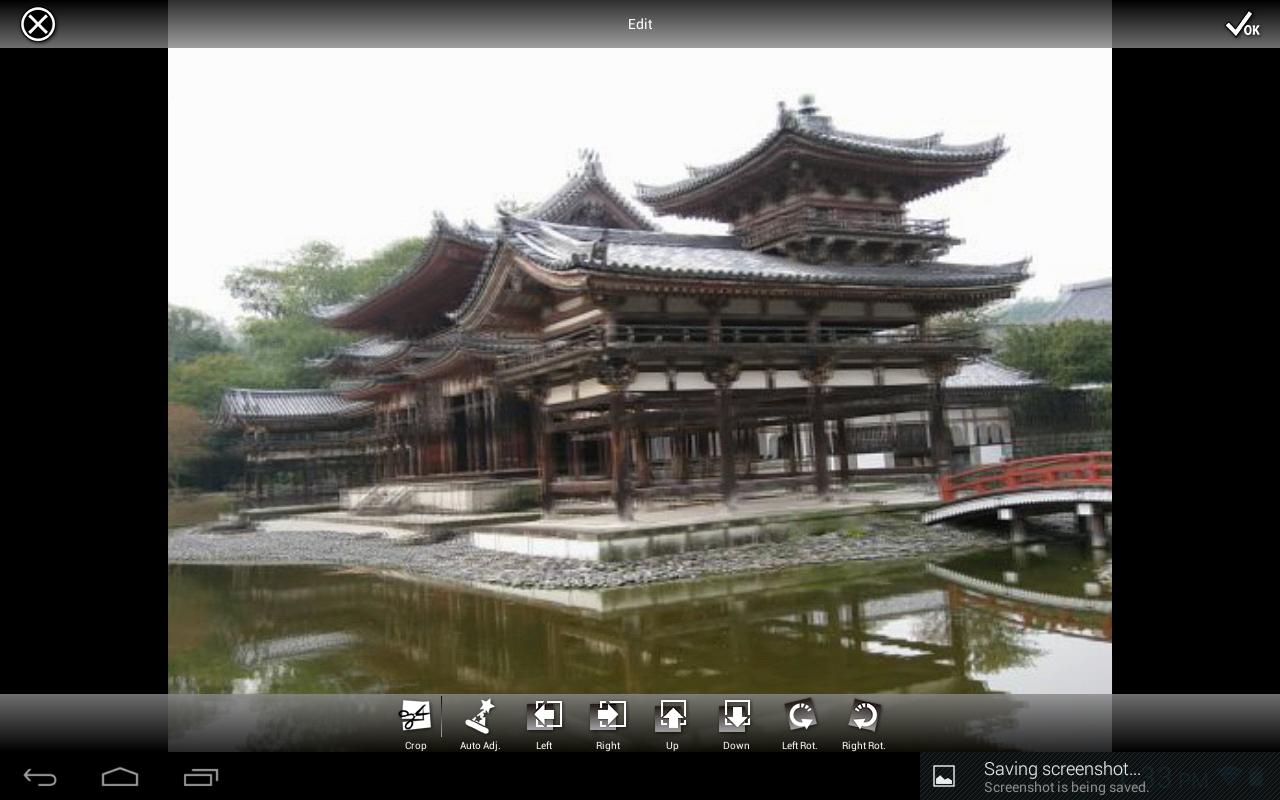 3DSteroid Pro - screenshot