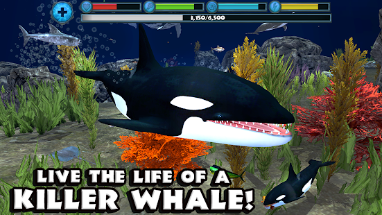 Orca Simulator- screenshot thumbnail