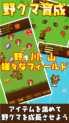 野グマ~育成&放置ゲーム~