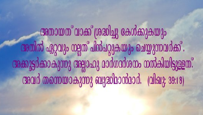 Quran Malayalam - screenshot