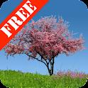 Spring Trees Free logo