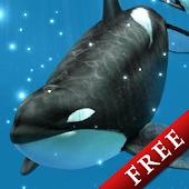 Orca Snow Trial