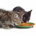 Cat Food Live Wallpaper icon